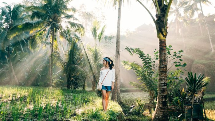 Where to Propose in Tegallalang Rice Terrace - Ubud - Bali