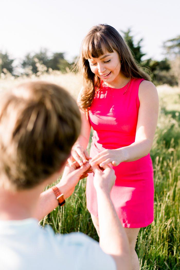 Wedding Proposal Ideas in Santa Cruz