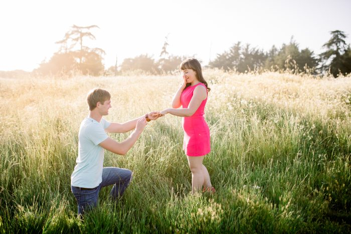 Marriage Proposal Ideas in Santa Cruz