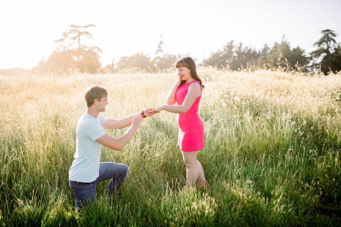 Marriage Proposal Ideas in Santa Cruz