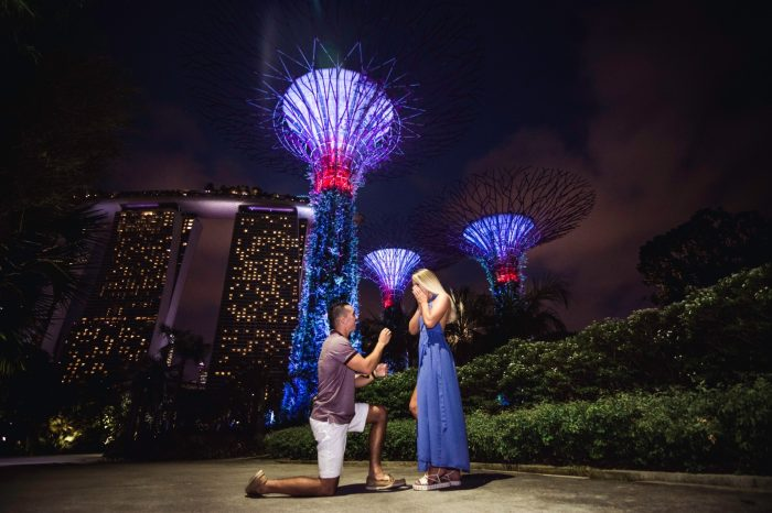 Marriage Proposal Ideas in Gardens by the Bay Singapore