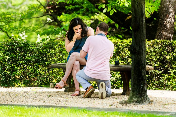 Engagement Proposal Ideas in Dumbarton Oaks