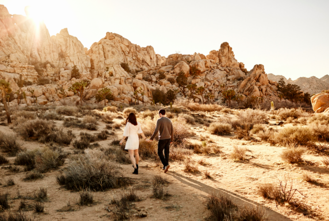 Where to Propose in Joshua Tree