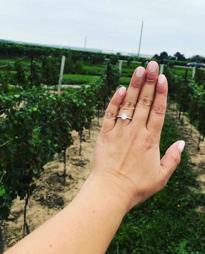 Tovah and Wesley's Engagement in Wayne Gretzky Winery. Niagara Falls, Ontario