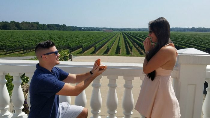 Where to Propose in Raphael's Vineyard