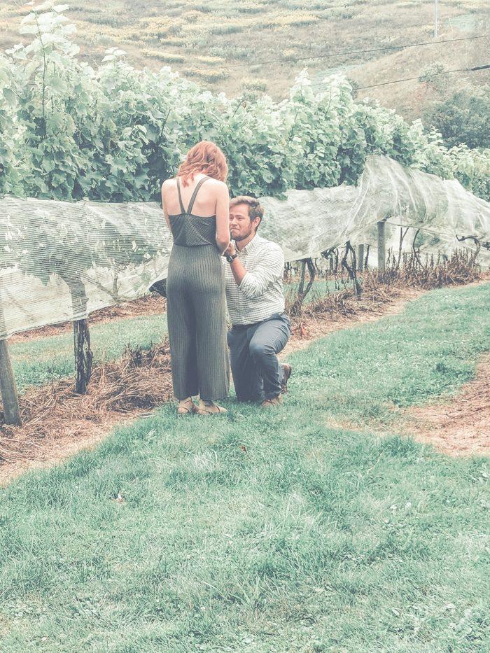 Marriage Proposal Ideas in Banner Elk Winery