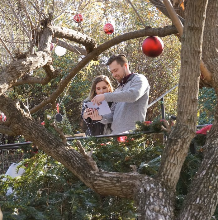 Where to Propose in Dallas Arboretum and Botanical Gardens
