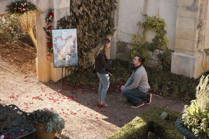 Wedding Proposal Ideas in Dallas Arboretum and Botanical Gardens