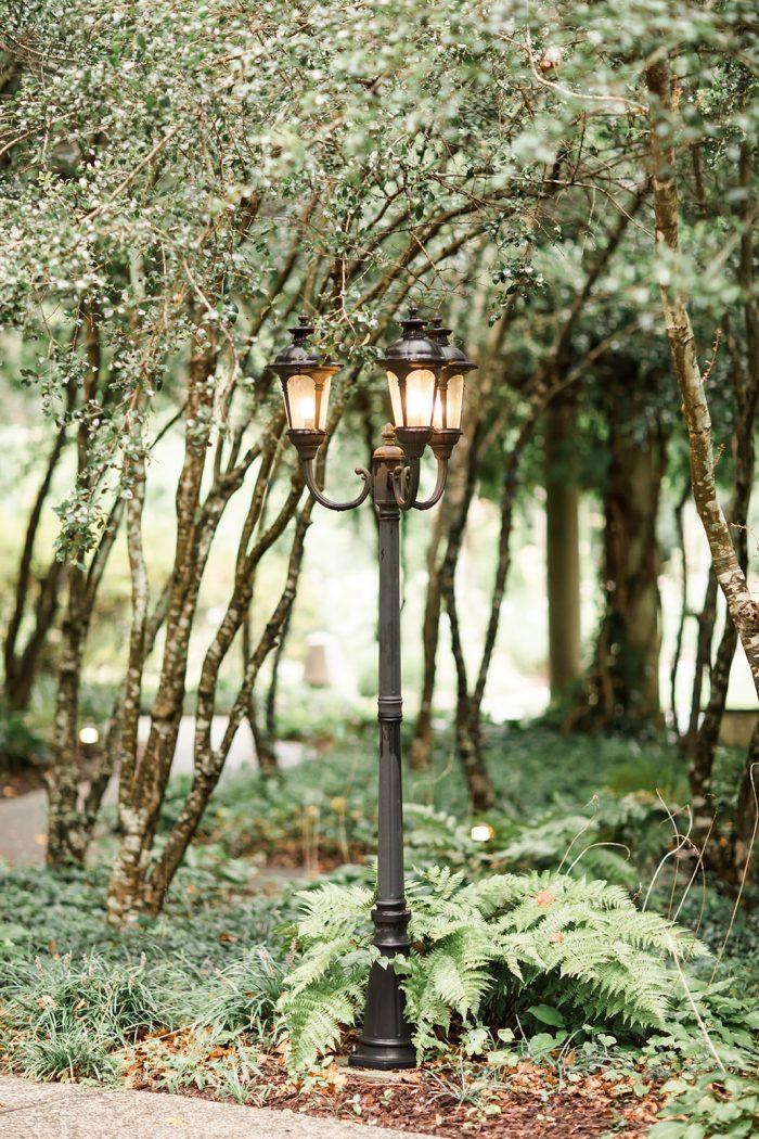 Chelsea and Rick's Engagement in Cator Woolford Gardens, Atlanta, GA