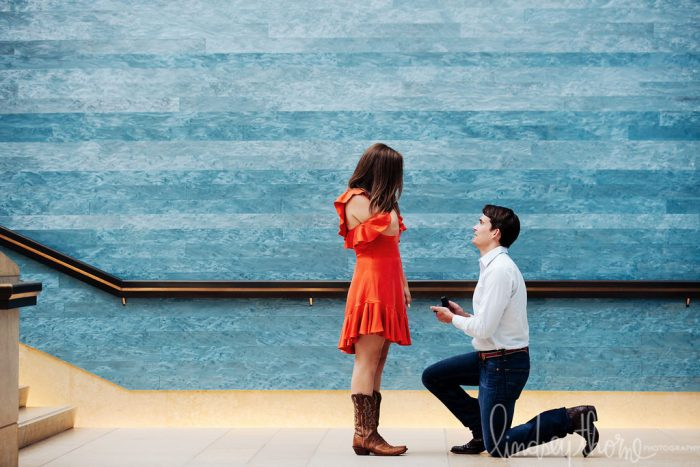 Where to Propose in In Austin at The Blanton Museum