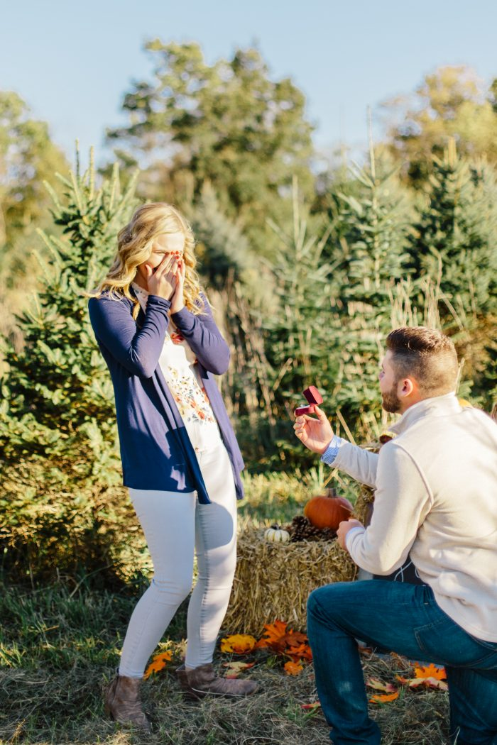 Where to Propose in Hoover Tree Farm West Liberty, Ohio
