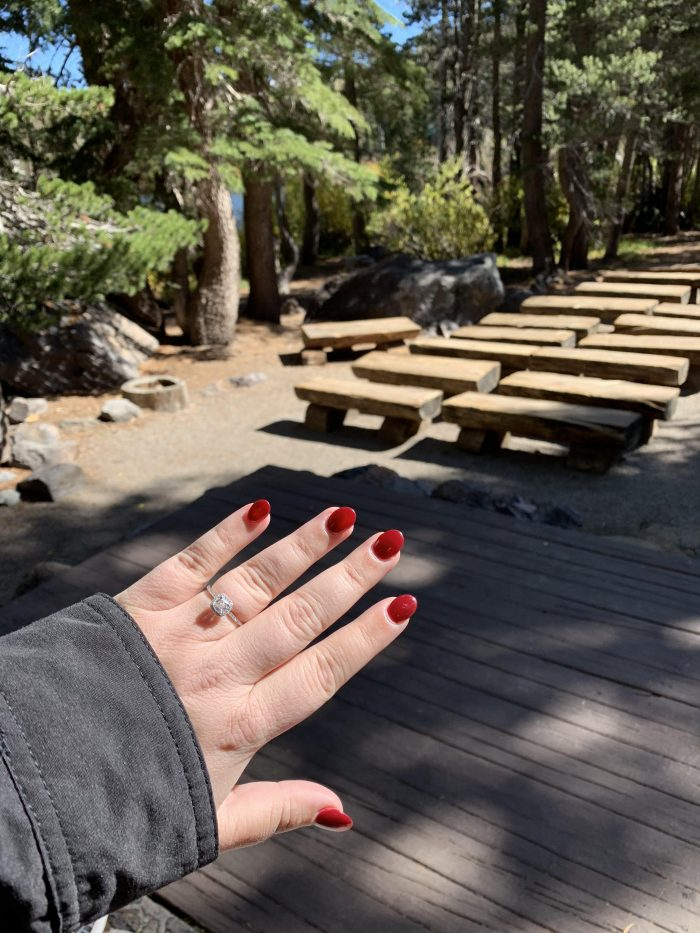 Madison's Proposal in Mammoth, CA