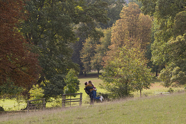Where to Propose in Hughenden Valley