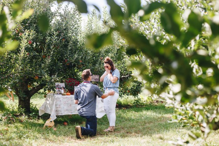 Ashley's Proposal in Lynds Fruit Farm - Columbus,OH