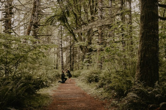 Eszter's Proposal in Tillamook State Forest