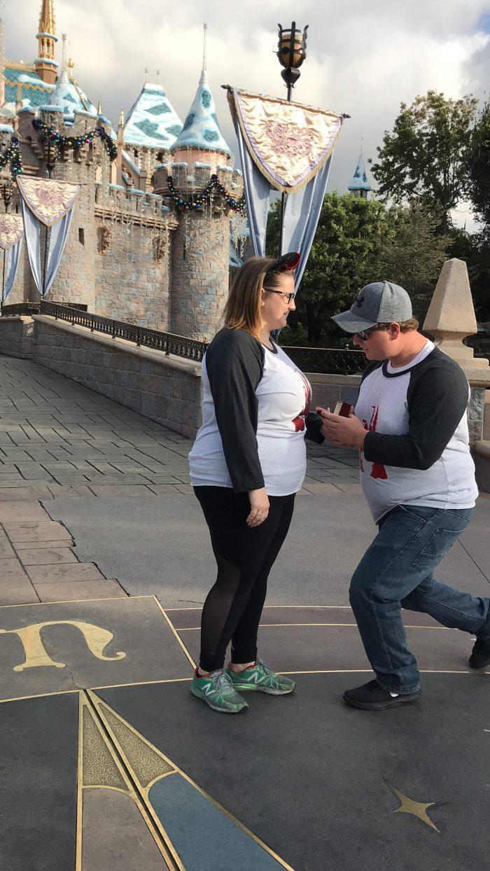 Marriage Proposal Ideas in Disneyland castle