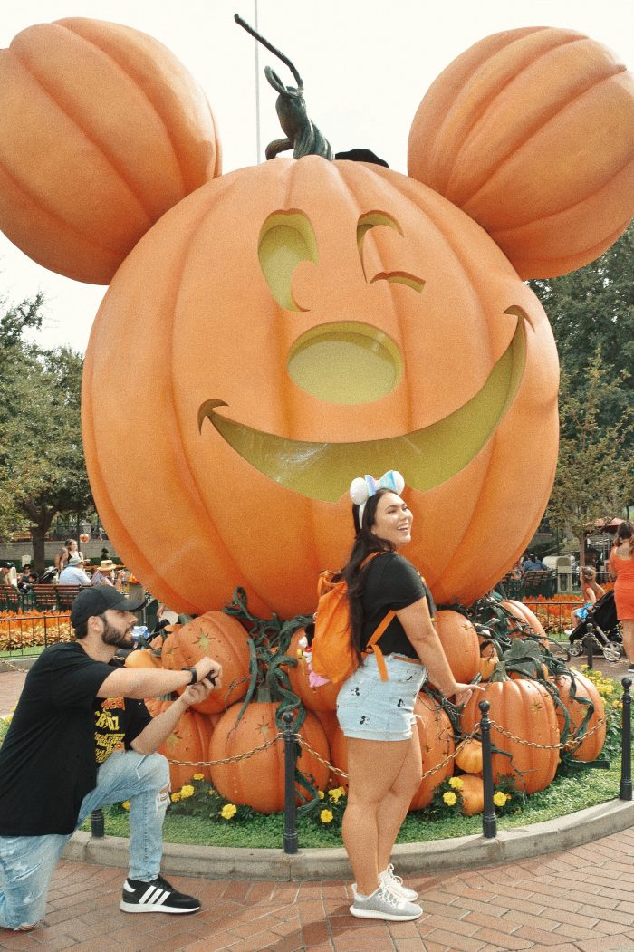 Kaitlyn's Proposal in Disneyland