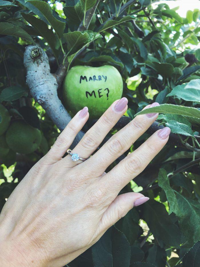 Marriage Proposal Ideas in Johnsons Corner Farm - Medford, NJ