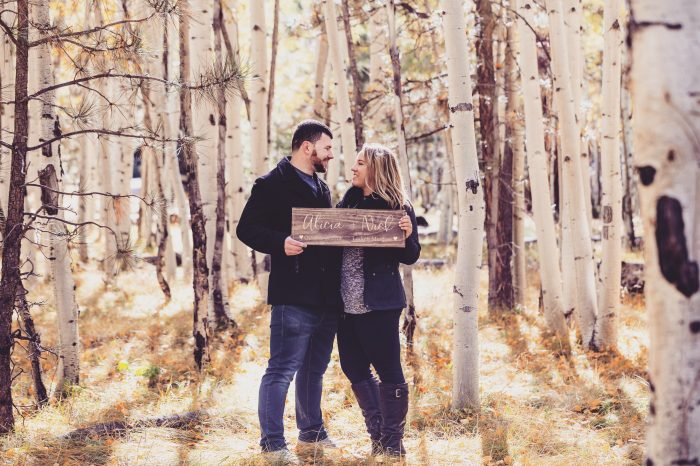 Where to Propose in Lockett Meadow, Flagstaff, AZ