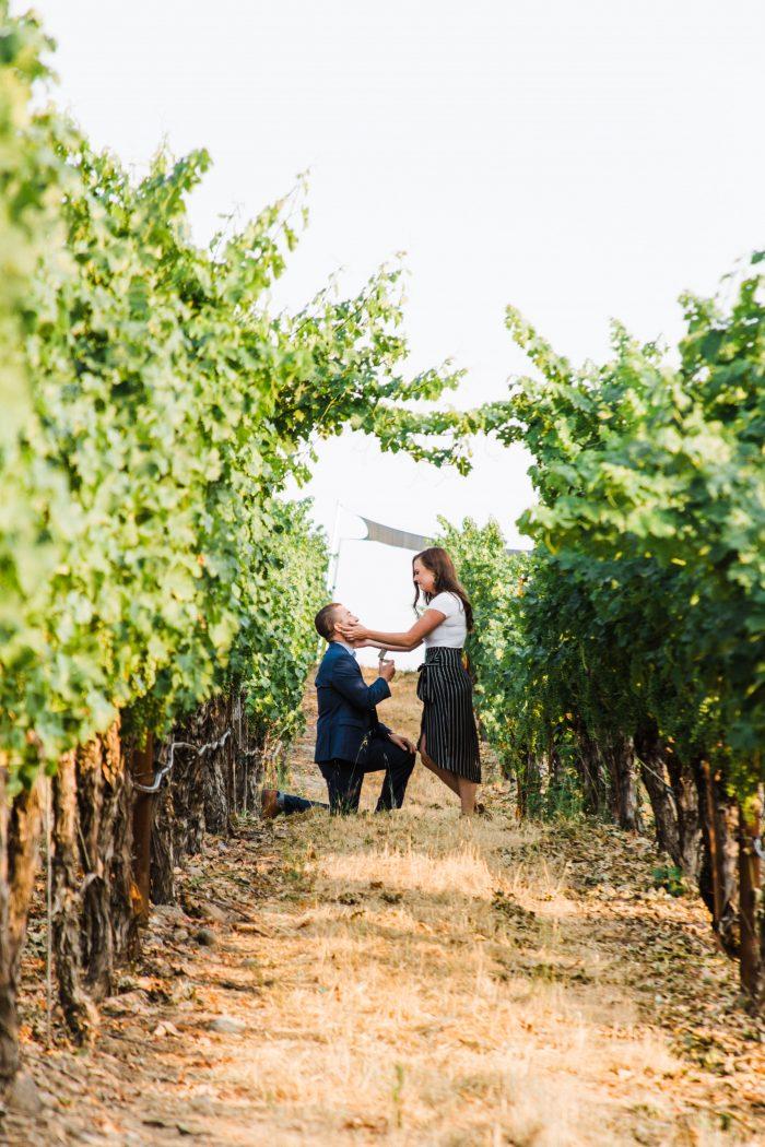 Marriage Proposal Ideas in Napa, CA