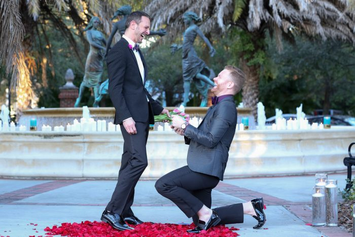 Marriage Proposal Ideas in Burn's Park, Tampa, FL