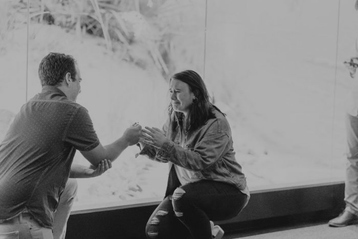 Engagement Proposal Ideas in Mississippi Museum of Natural Science