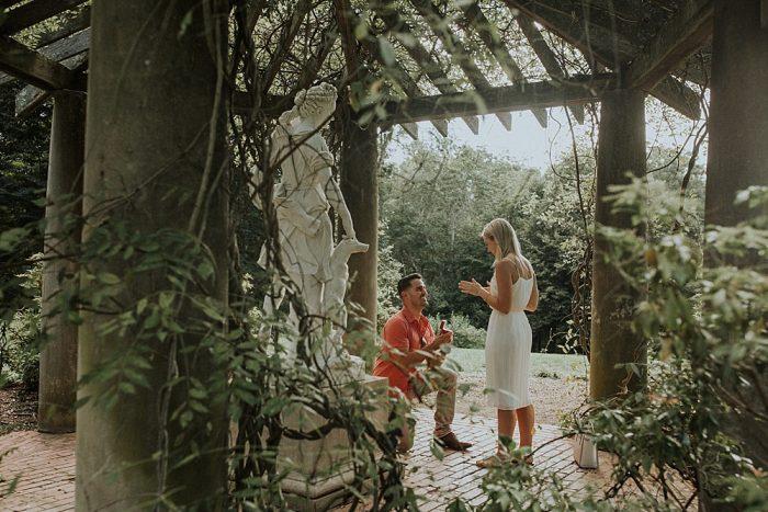Proposal Ideas The Biltmore Estate