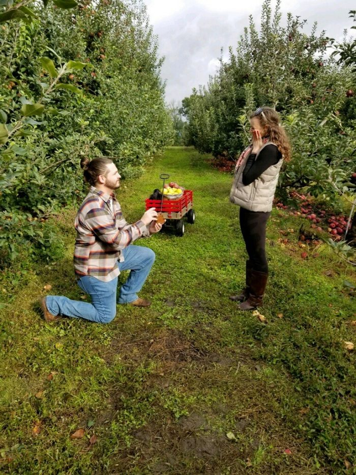 Georgia and Nolan's Engagement in Brecknock Orchard