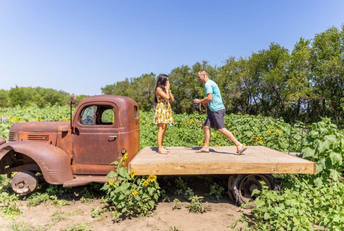 Kristina's Proposal in KC Wine Co. Sunflower Festival