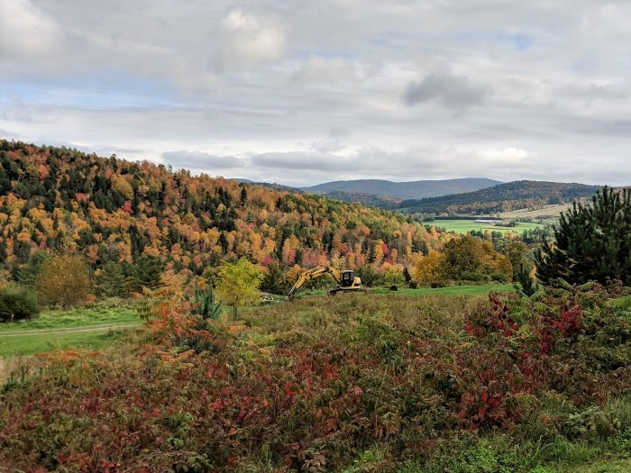 Where to Propose in Dog Moutain in St. Johnsbury, VT