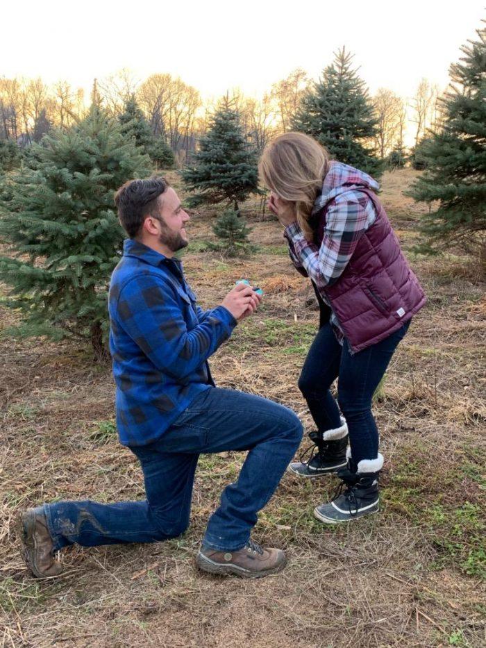 Wedding Proposal Ideas in Battenfeld Christmas tree farm