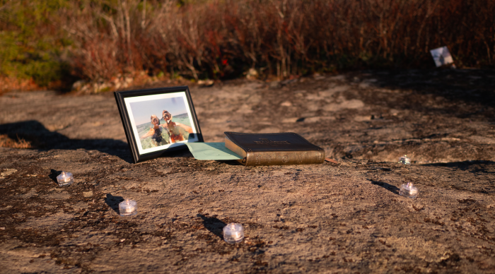Eliza's Proposal in Blue Ridge Parkway, Flat Rock Overlook MP 308.3