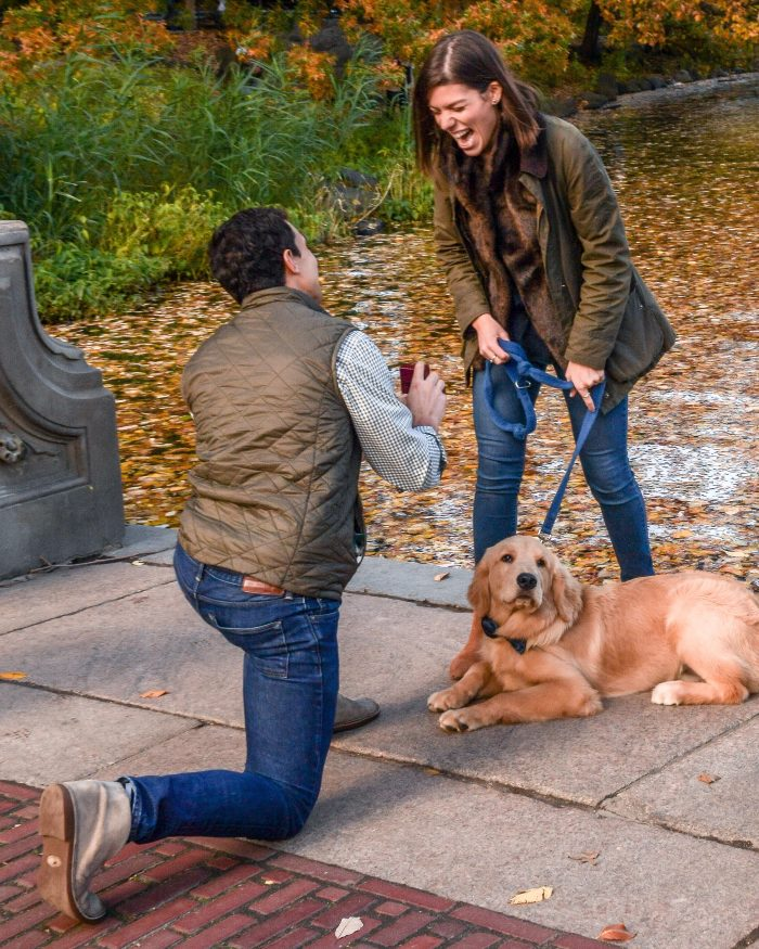 Engagement Proposal Ideas in Central Park - Bethesda Fountain