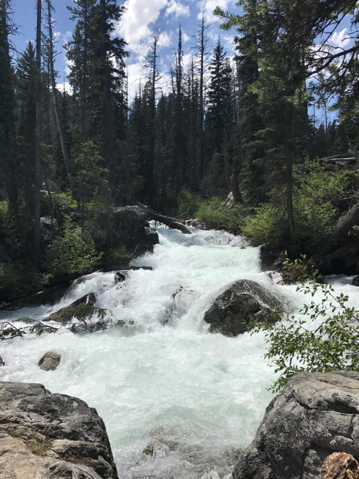 Cara Van's Proposal in Redfish Lake, Idaho (Sawtooth National Forest)