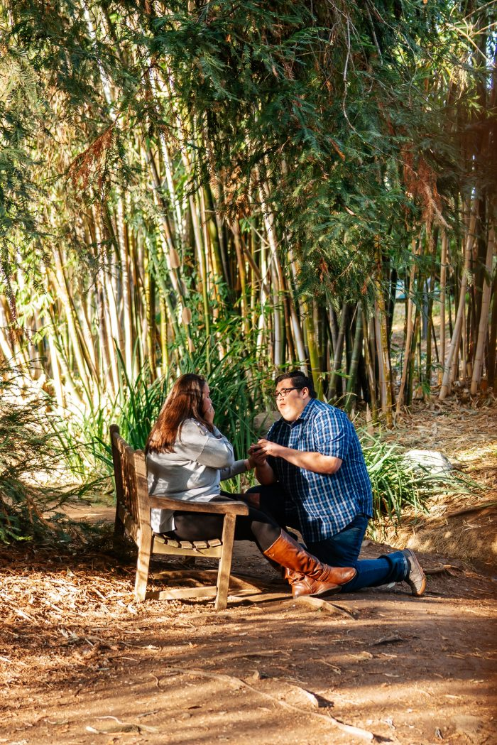 Marriage Proposal Ideas in Fullerton Arboretum