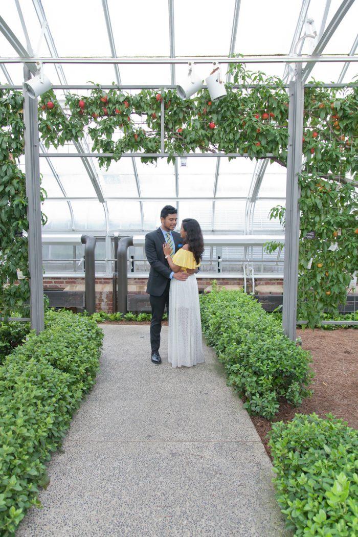 Wedding Proposal Ideas in Longwood gardens