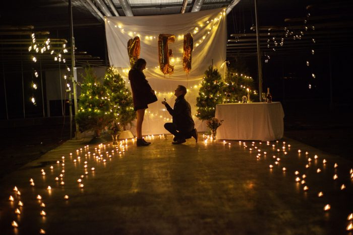Engagement Proposal Ideas in Top Grow Greenhouse