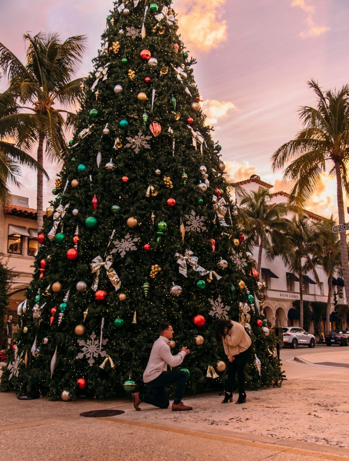 Engagement Proposal Ideas in Palm Beach, Florida