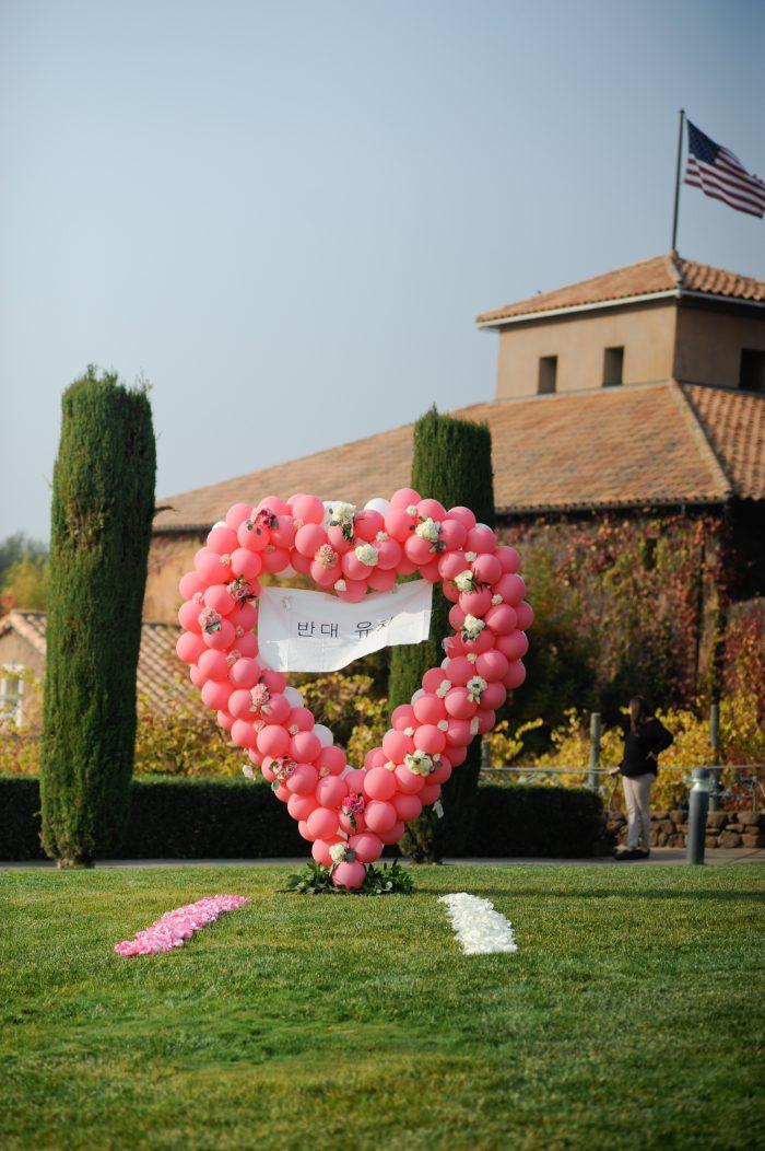 Jerry and Natashya's Engagement in Sonoma, CA