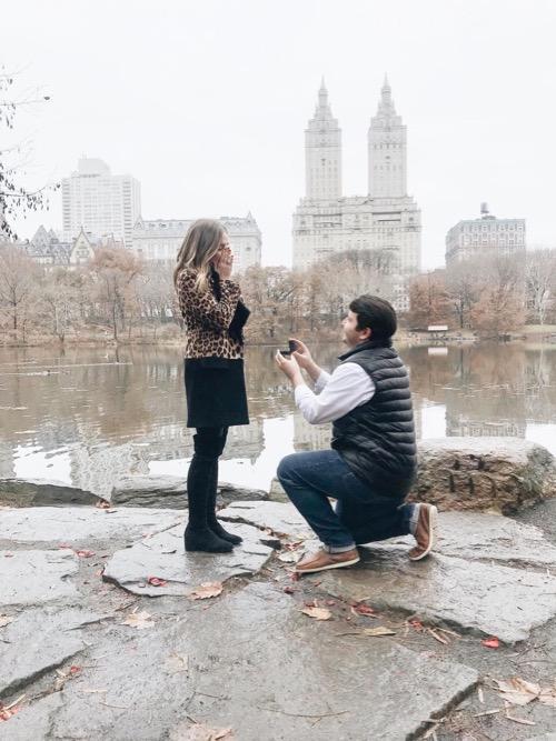 Proposal Ideas Central Park