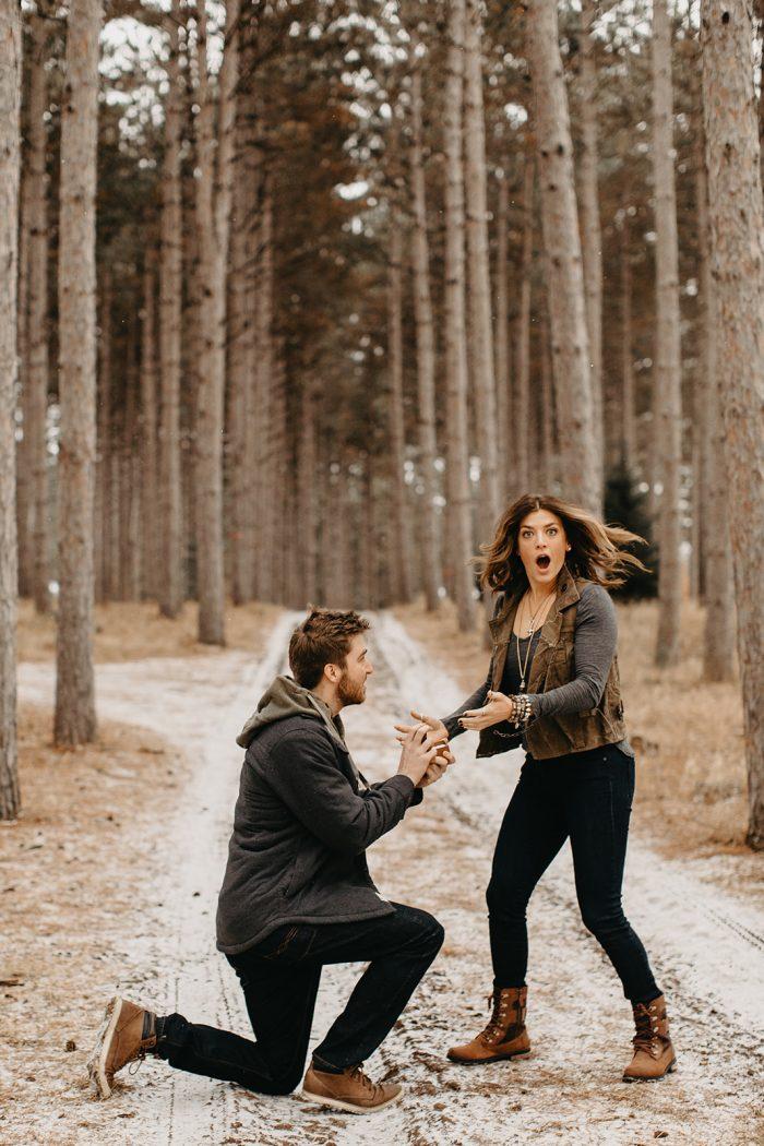 Wedding Proposal Ideas in Hansen Tree Farm - Anoka, MN