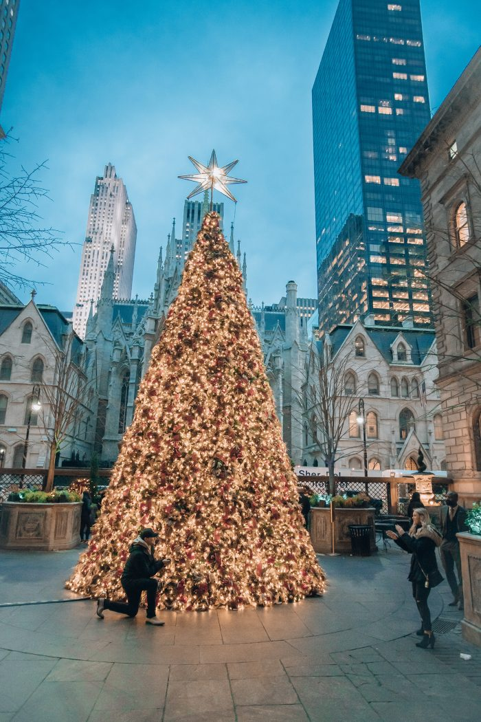 Engagement Proposal Ideas in New york city