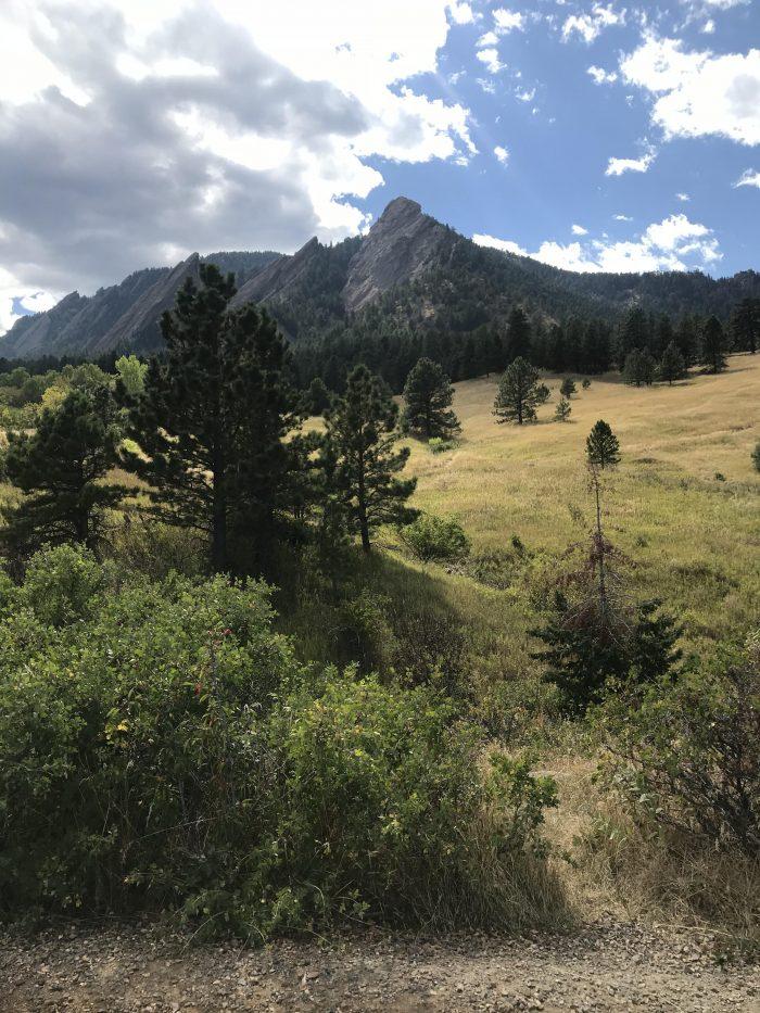Where to Propose in Chautauqua Park in Boulder, CO