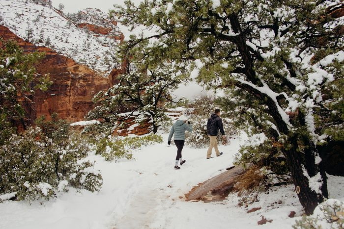 Sage's Proposal in Zion National Park, UT