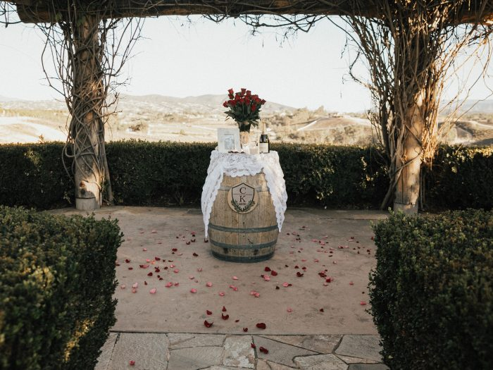 Kendall and Channing's Engagement in South Coast Winery, Temecula, CA