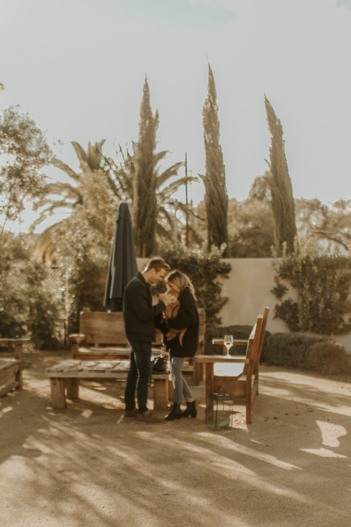 Marriage Proposal Ideas in Topa Mountain Winery