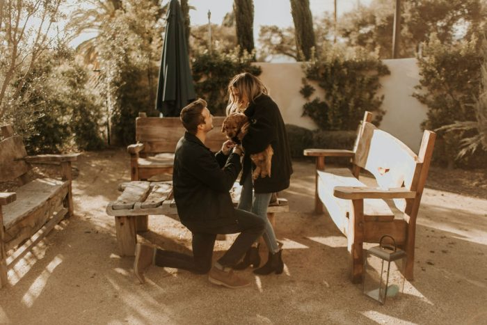 Where to Propose in Topa Mountain Winery