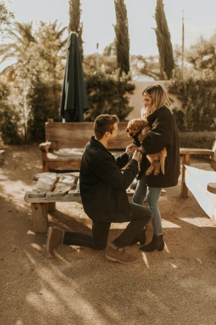 Lacey and Dylan's Engagement in Topa Mountain Winery