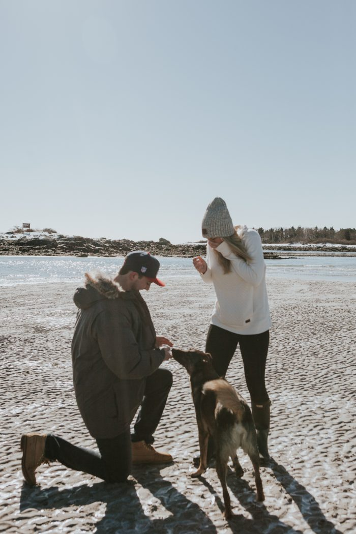 Elana's Proposal in Goose Rocks Beach