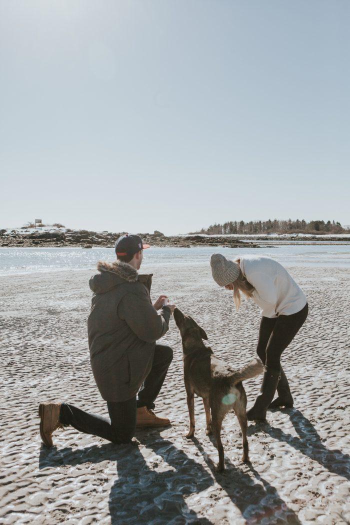 Wedding Proposal Ideas in Goose Rocks Beach